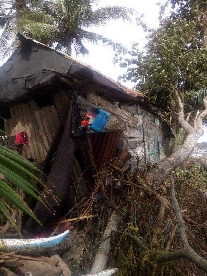 Sepuluh Hari Tak Melaut, Rumah Rusak Tertimpa Pohon Besar